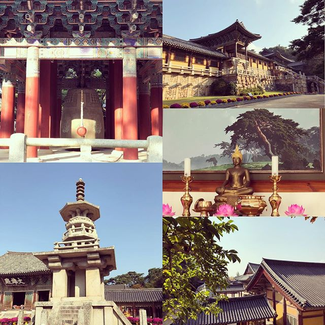 #buddhist #temple #buddhism #southkorea #korea #asianaairlines #koreatourismorganization #koreatourism #sigtn #signaturetravelnetwork #asia #oasistravelnetwork #instatravel