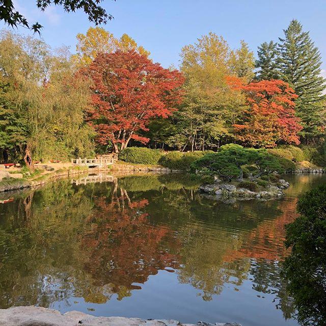 #fall #color #southkorea #korea #autumn #temple #instatravel #buddhism #asia