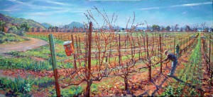 Ceago vineyards during pruning holdsworth painting