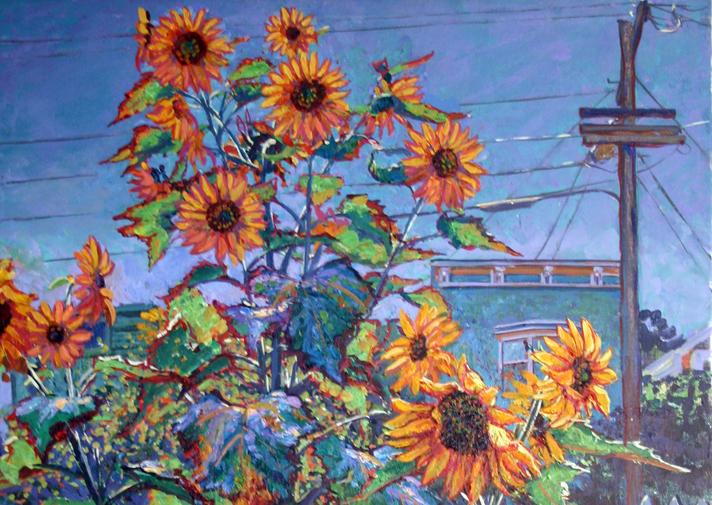 SF.Sunflower6Blog