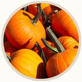 season-icon-autumn.jpg