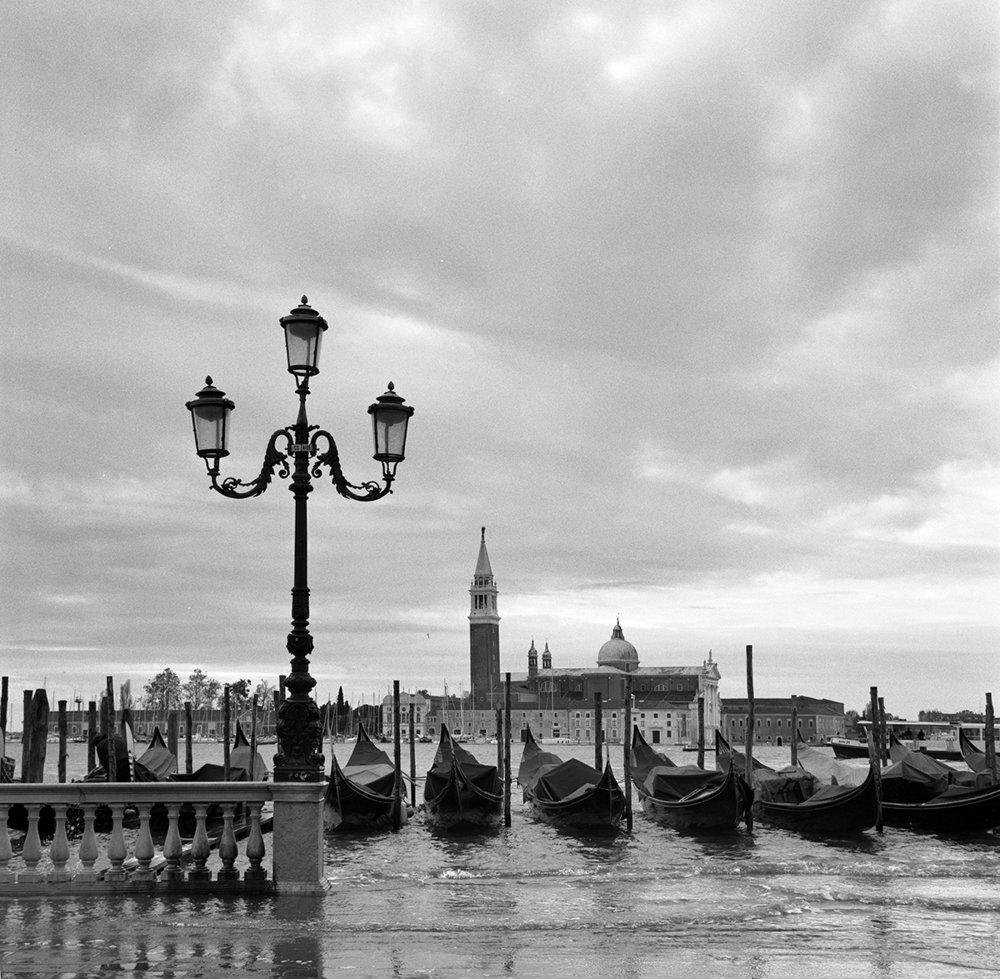 Venice437.5.jpg