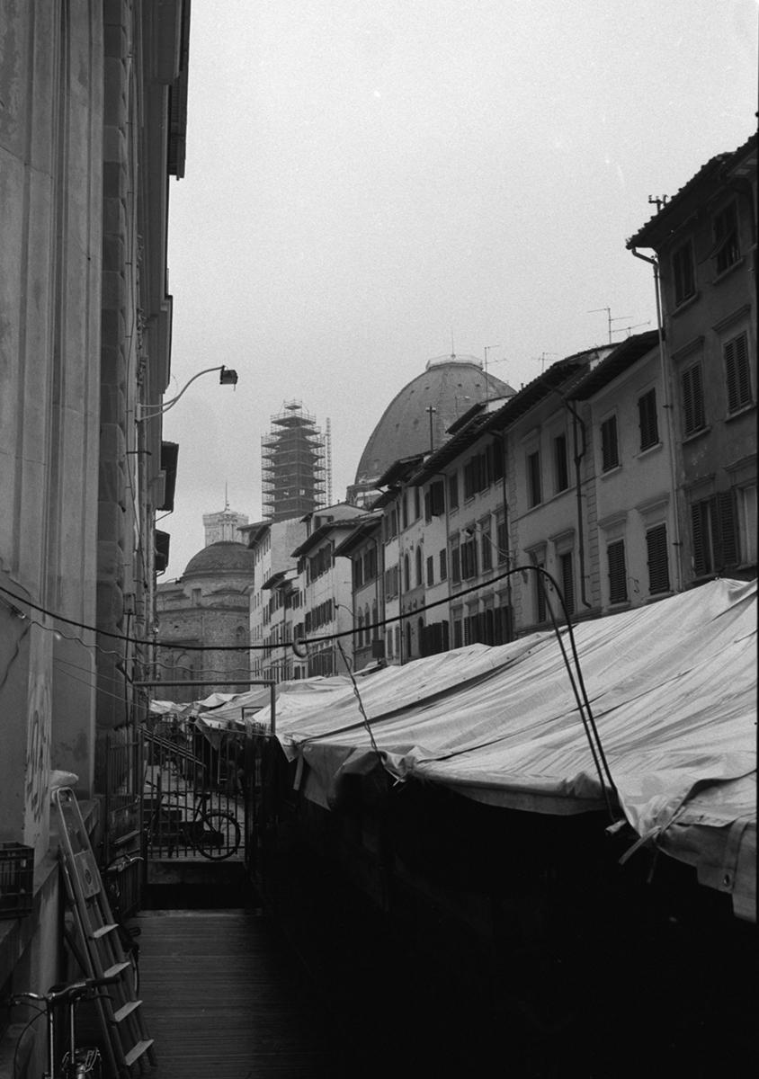 Florence229.jpg