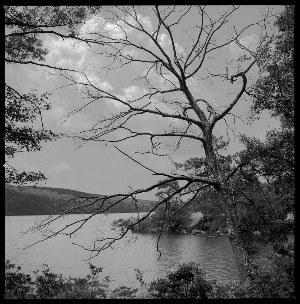 The Lake1.jpg