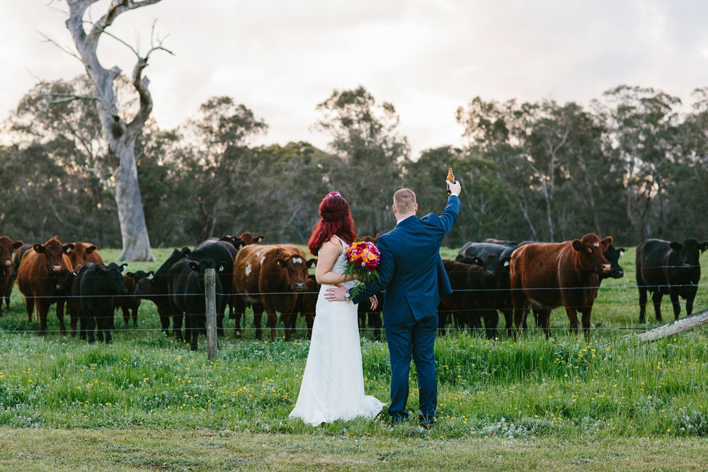 Jess and Luke-farm wedding-91.jpg