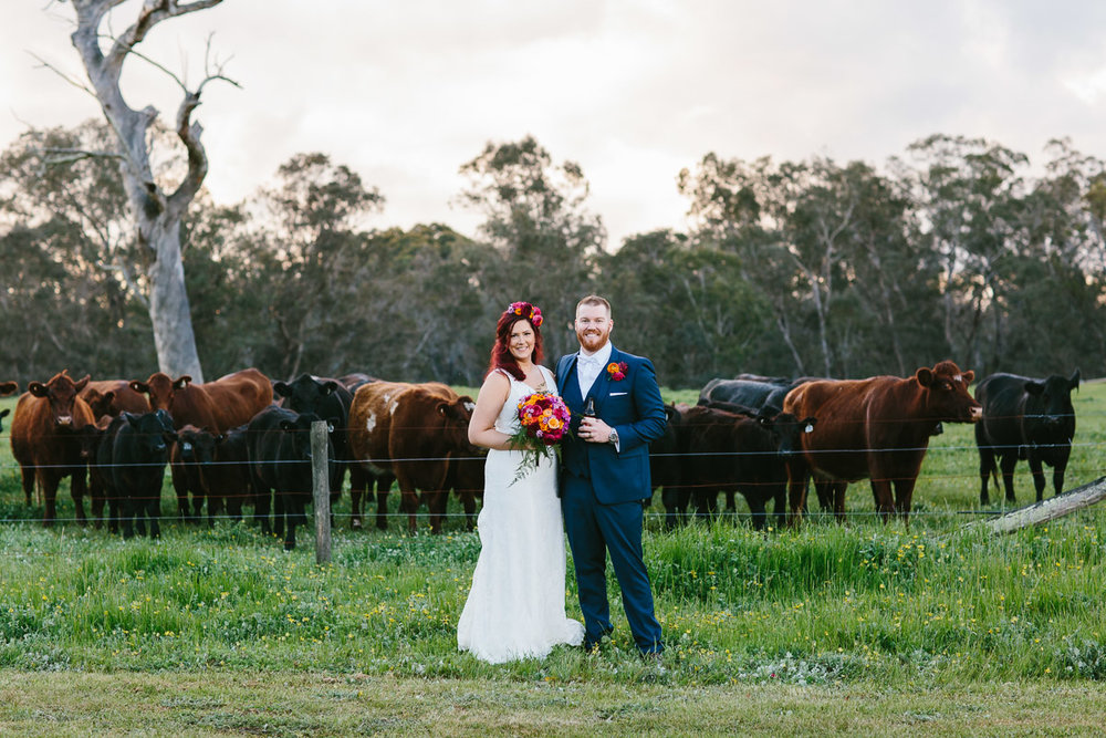 Jess and Luke-farm wedding-92.jpg