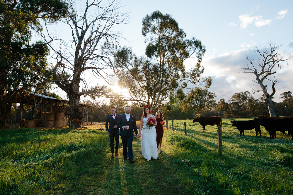 Jess and Luke-farm wedding-100.jpg