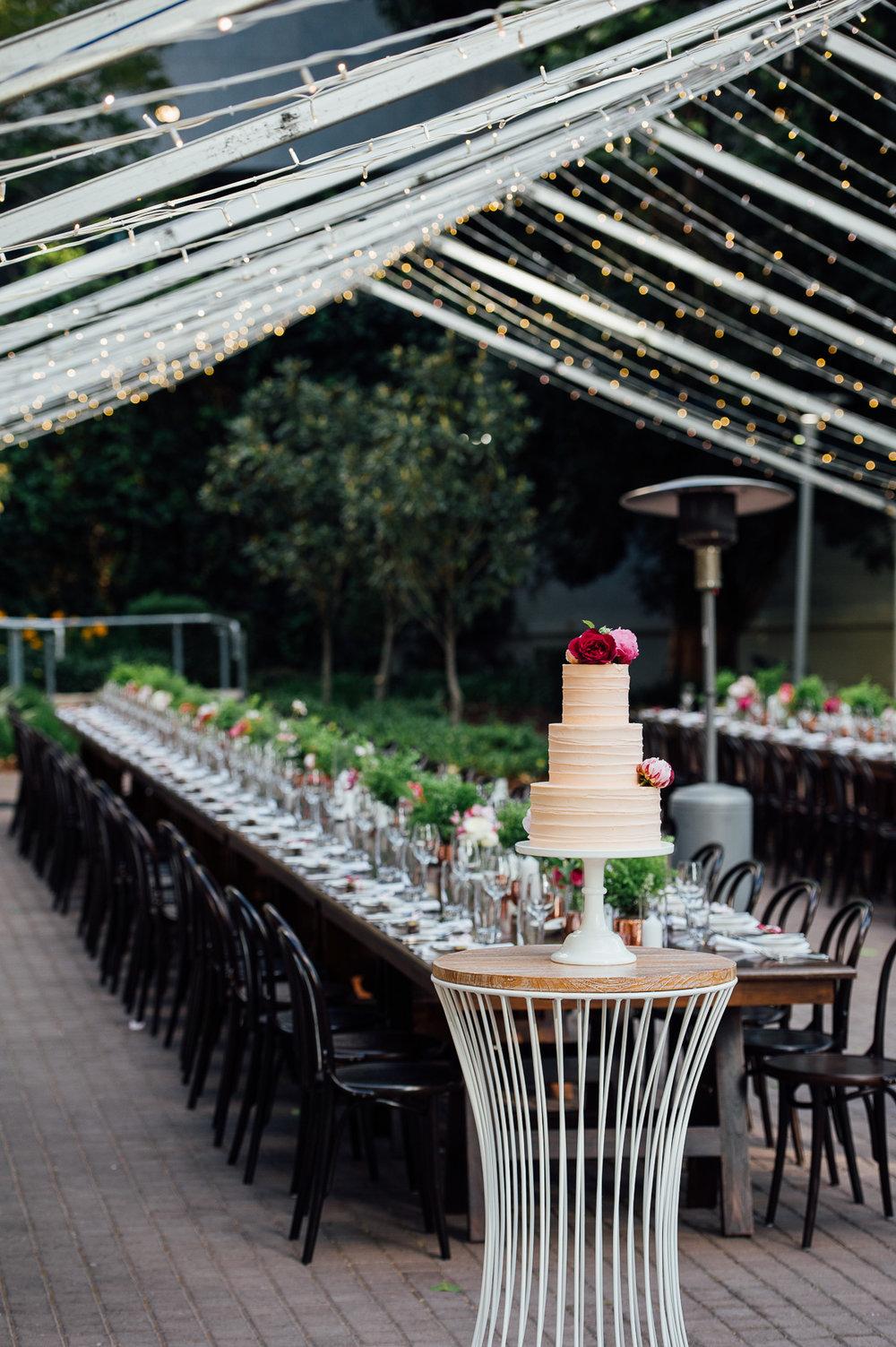 Caitlin+Joel-Lamonts Bishops House wedding-Peggy Saas-81.jpg