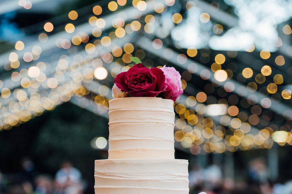 The Cake and I-wedding cake