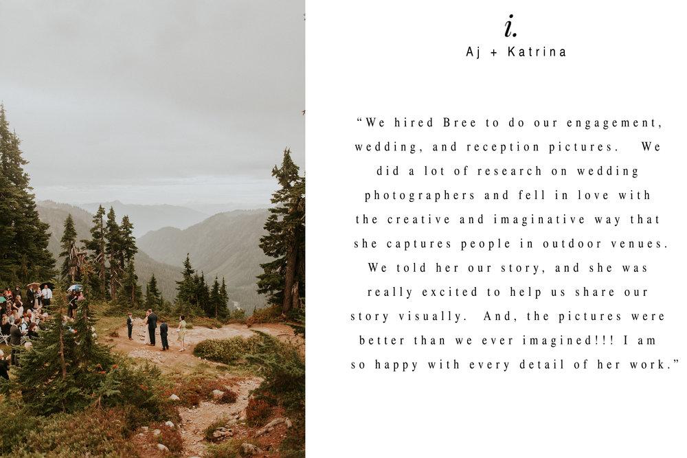 Mount-baker-artist-point-elopement-review 1.jpg