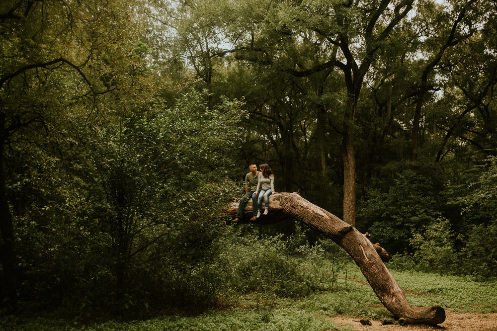san antonio engagement photography lovers up in a tree
