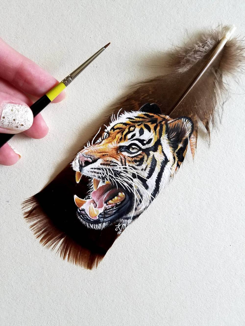 Tiger on a wild turkey feather