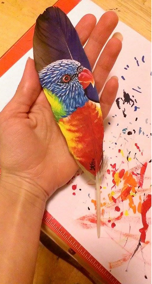 Rainbow Lorikeet on a macaw feather