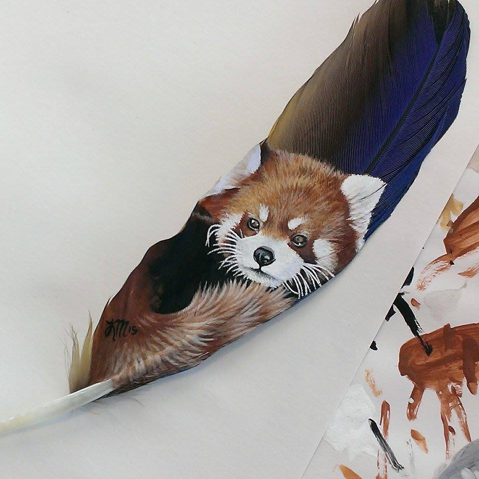 Red Panda on a macaw feather