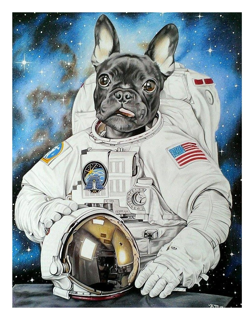 Django the French Bulldog as an astronaut