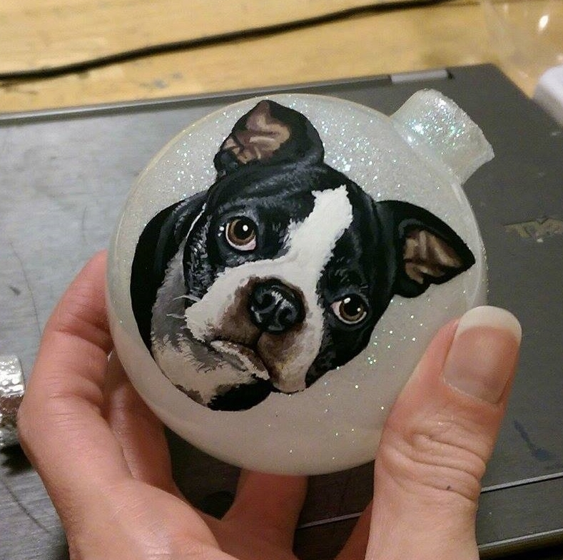 Mattie the Boston Terrier
