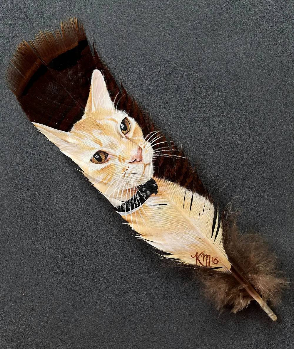 Silky the cat on a wild turkey feather