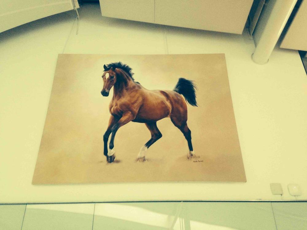 horsecalledfreedomdublin.jpg