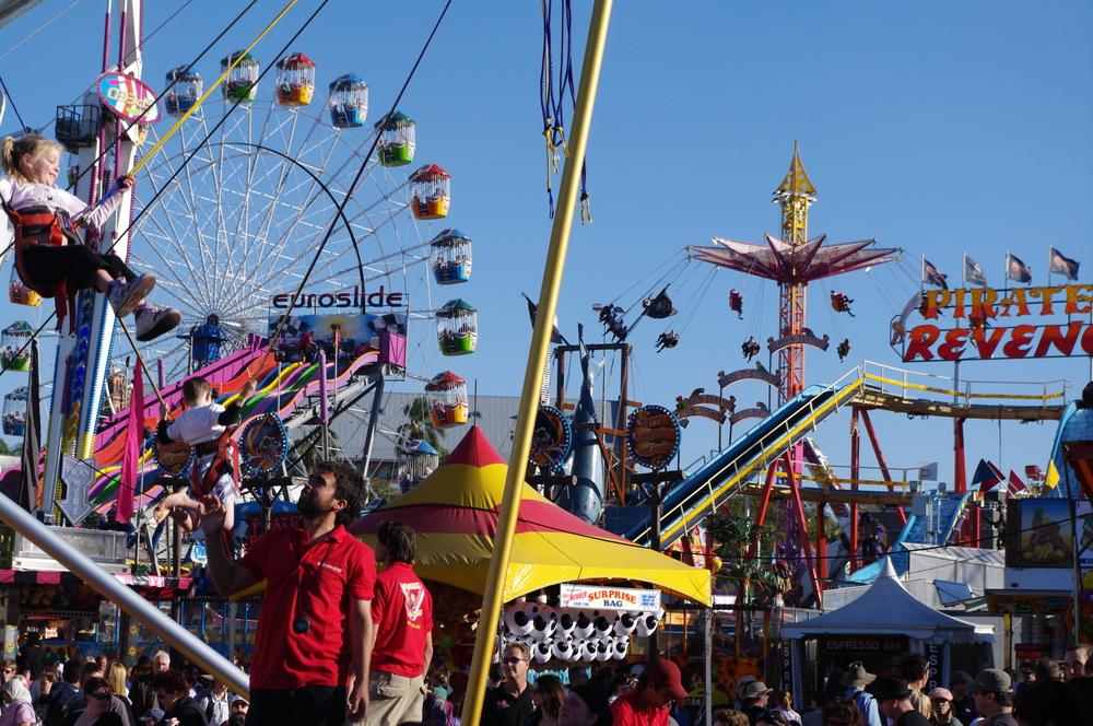 Sensory Seekers for movement like Amusement Rides.