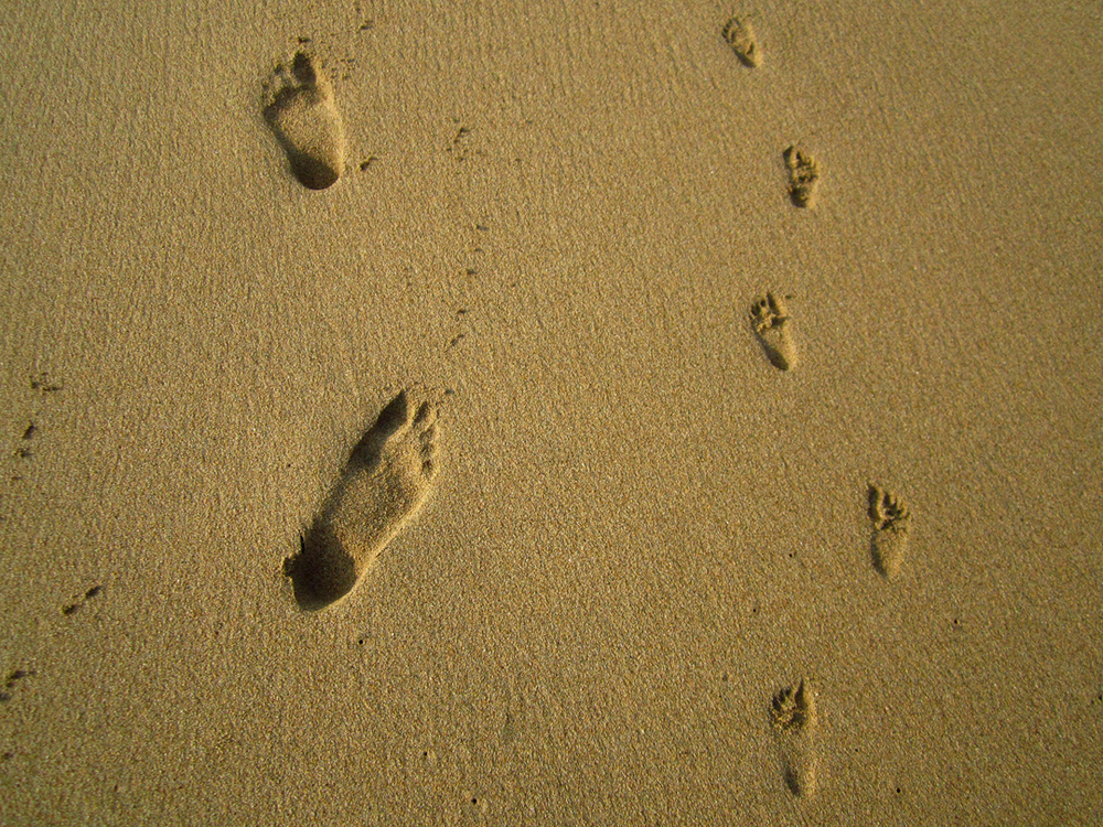 Big and little - Phil & Syd's footprints