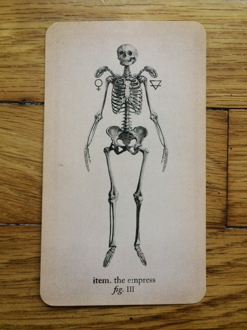The Empress card in the Antique Anatomy Tarot