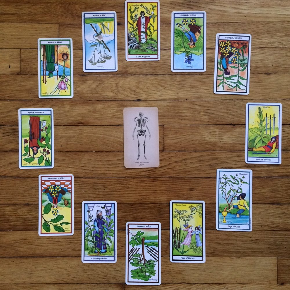 Astrological spread containing Antique Anatomy Tarot and The Herbal Tarot cards
