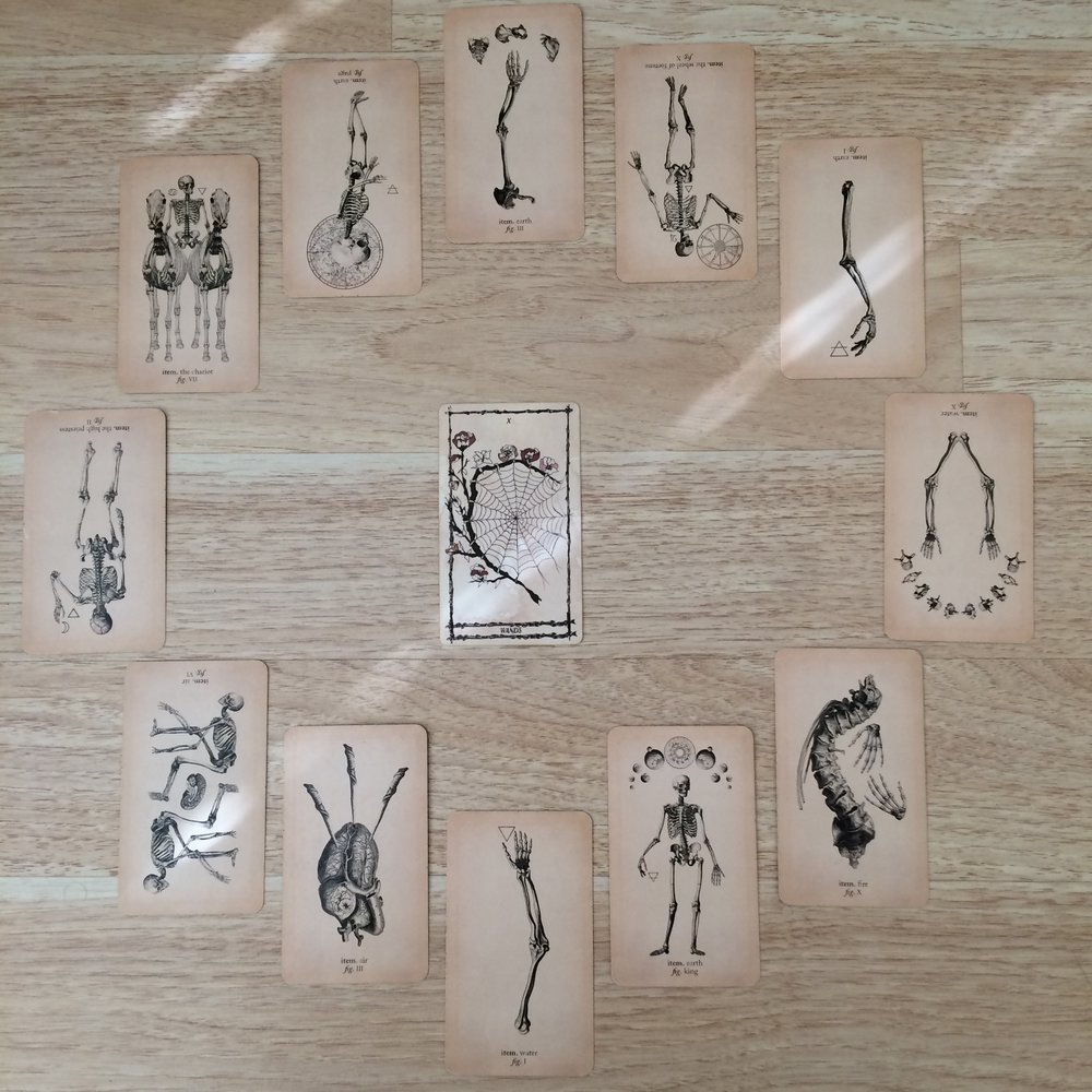 Astrological spread with  Ophidia Rosa Tarot  and  Antique Anatomy Tarot