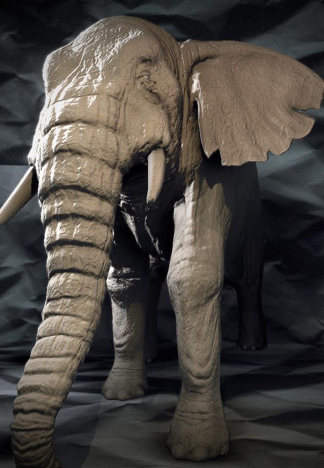 Elephant01_flat.jpg