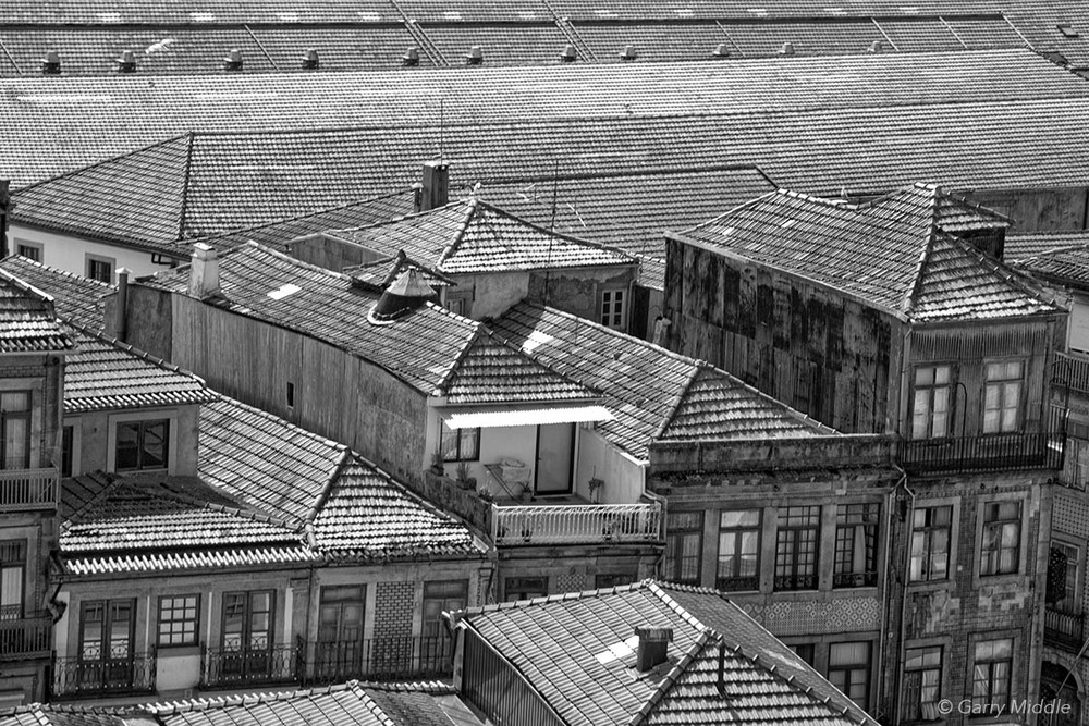 Roof tops.jpg