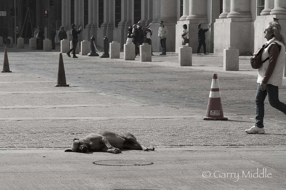 Santiago people 6 and dog.jpg