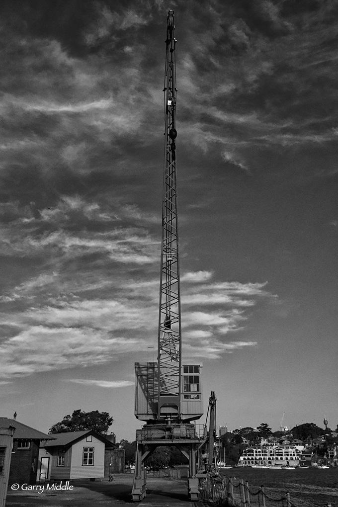 Crane B and W.jpg