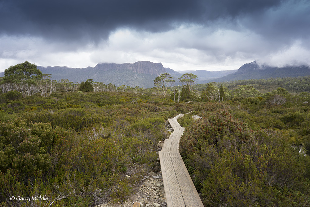 Latest project - photographs form the Overland Track, Tasmania