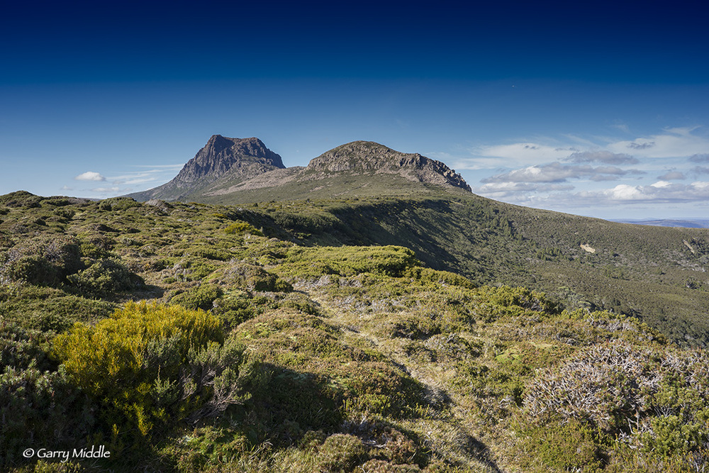 Small_Copyright_Craddle Mt from the South.jpg