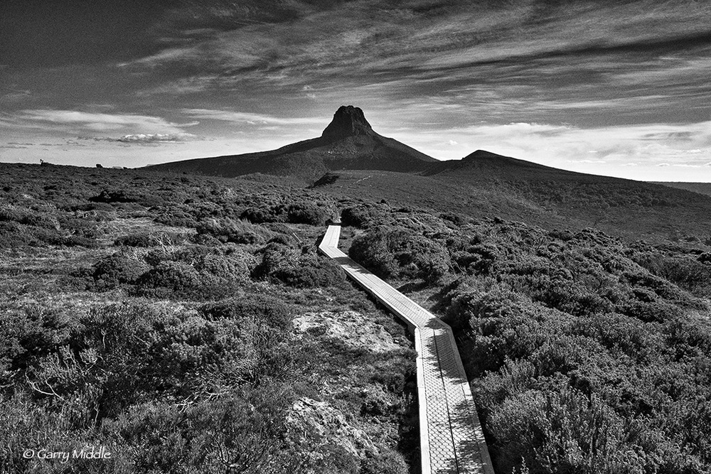 Small_Copyright_Track to Barns Bluff B&W.jpg