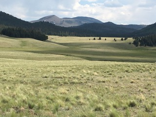 Valles Caldera, National Preserve, Northern New Mexico    Photograph by Author