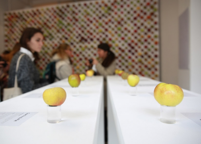 the-real-apple-store02.jpg