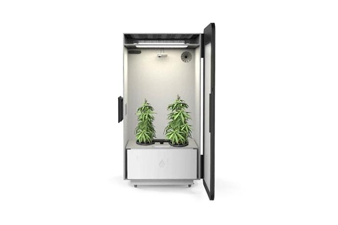 leaf-plug-n-plant-cannabis-home-growing-system-1.jpg