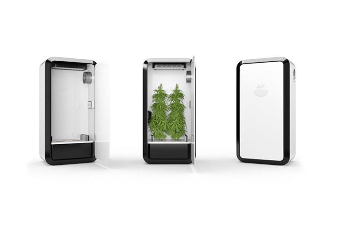 leaf-plug-n-plant-cannabis-home-growing-system-02.jpg