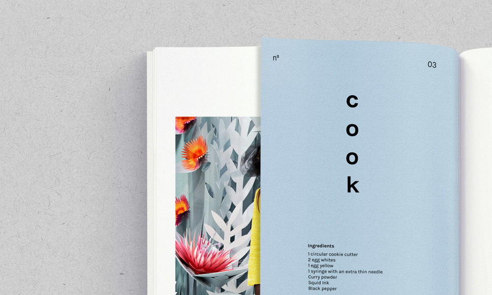 b-a-ba_graphic-design_alois-ancenay_benoit-hody_cook-look-book_thatsitmag5.jpg