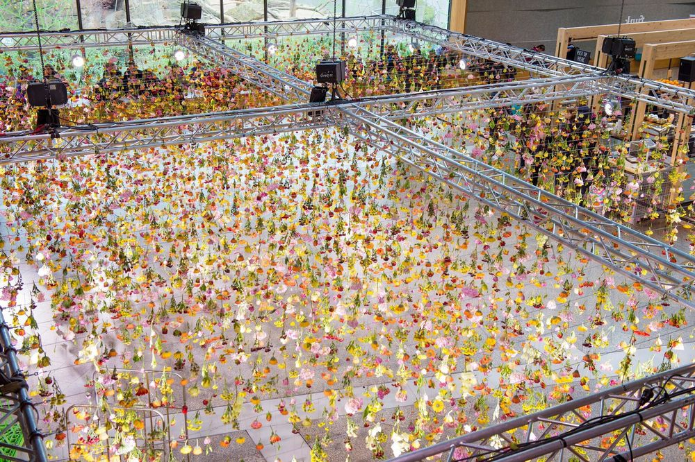 Rebecca Louise Law's Floral Installation Art-thatsitmag-3.jpg