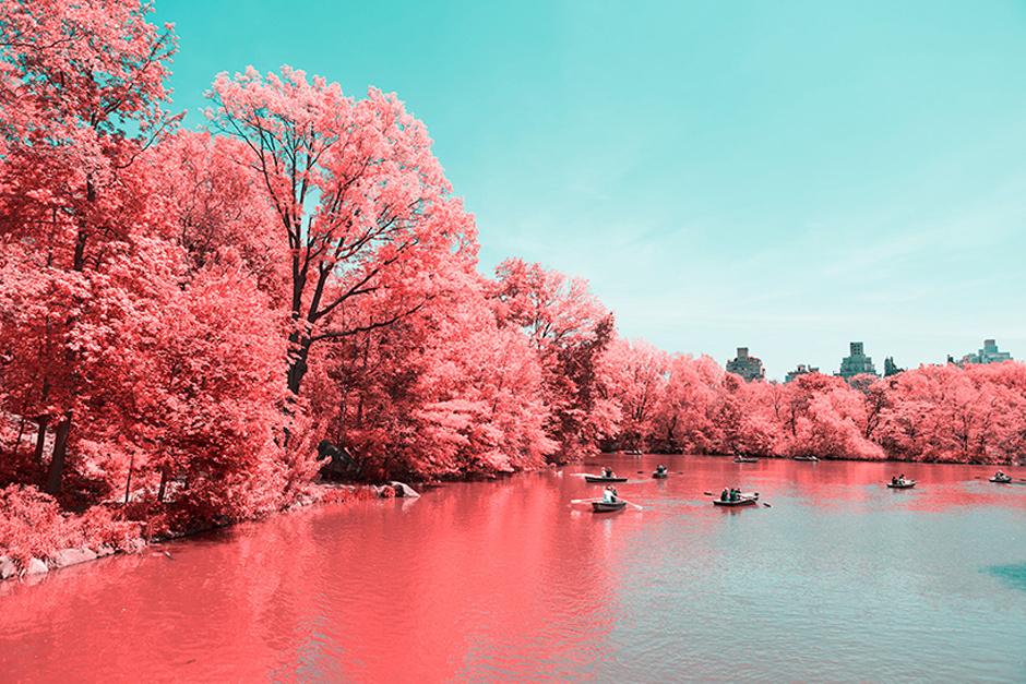 new-york-central-part-breathtaking-infrared-lanscape-thatsitmag3.jpg