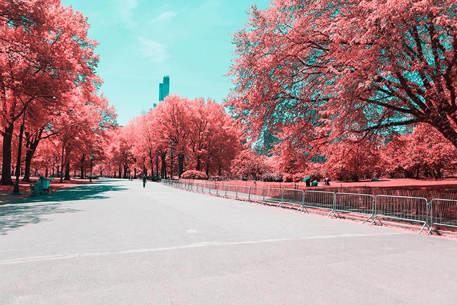 new-york-central-part-breathtaking-infrared-lanscape-thatsitmag2.jpg