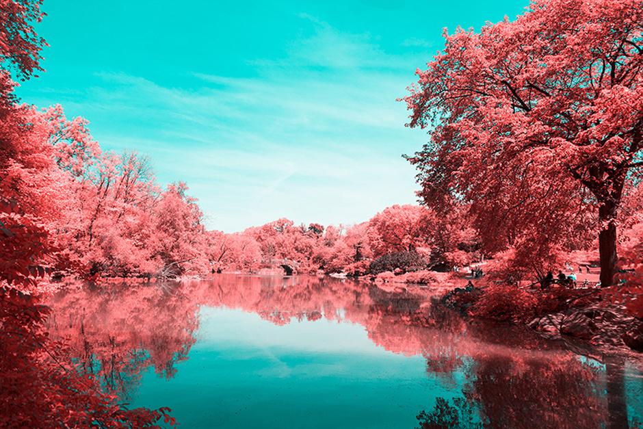 new-york-central-part-breathtaking-infrared-lanscape-thatsitmag4.jpg