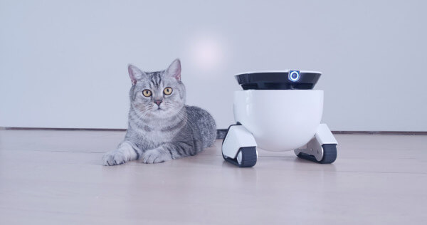 Roboming-you-personal-robofriend-thatsitmag-1.jpg