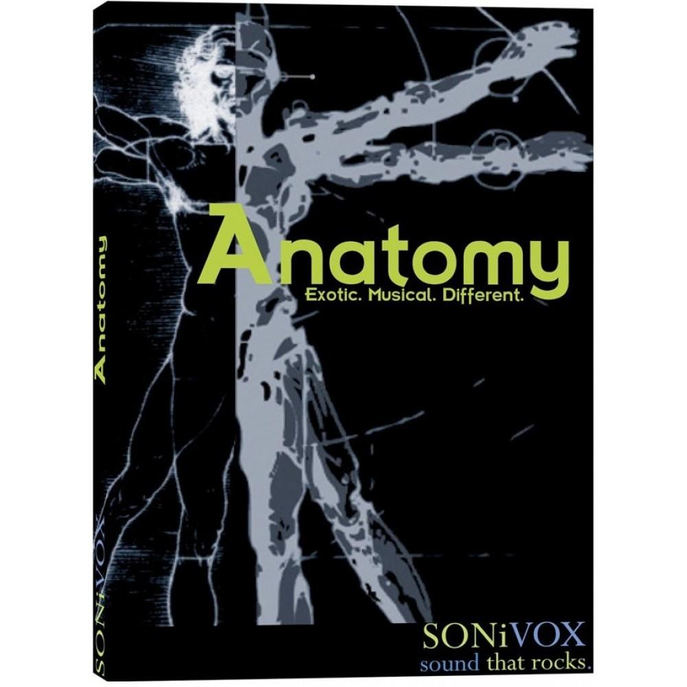 sonivox_anatomy.jpg