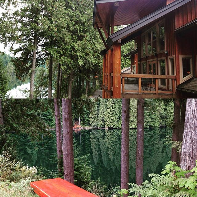 Nourishment and Freedom Aryuveda Yoga and Meditation Retreat at Loon Lake, Maple Ridge , Canada Feb 26-28 2016 Early Bird ends Oct 17th For more info please visit the website www.akashaaryuveda.com  #aryuveda #ayurvedayoga #meditation #heal #nature #wilderness #lake #yoga @wendyweymann @loonlakelodge