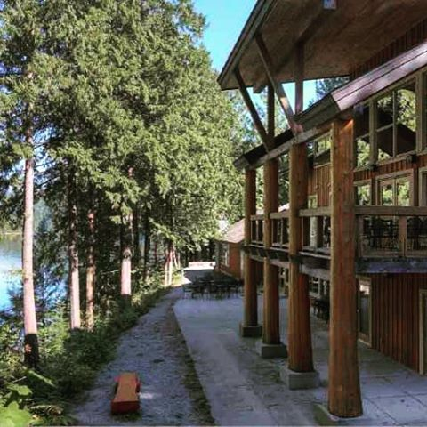 Ayurveda Yoga Retreat SAVE $100 ends sat Dec 25th.  Join me in pure nature on Feb 24-26 2017 at beautiful Loon Lake Retreat center Bc Canada.  Choose from private lake view room, double room or just come for 1 Day only. For more info please go www.akashaayurveda.com
