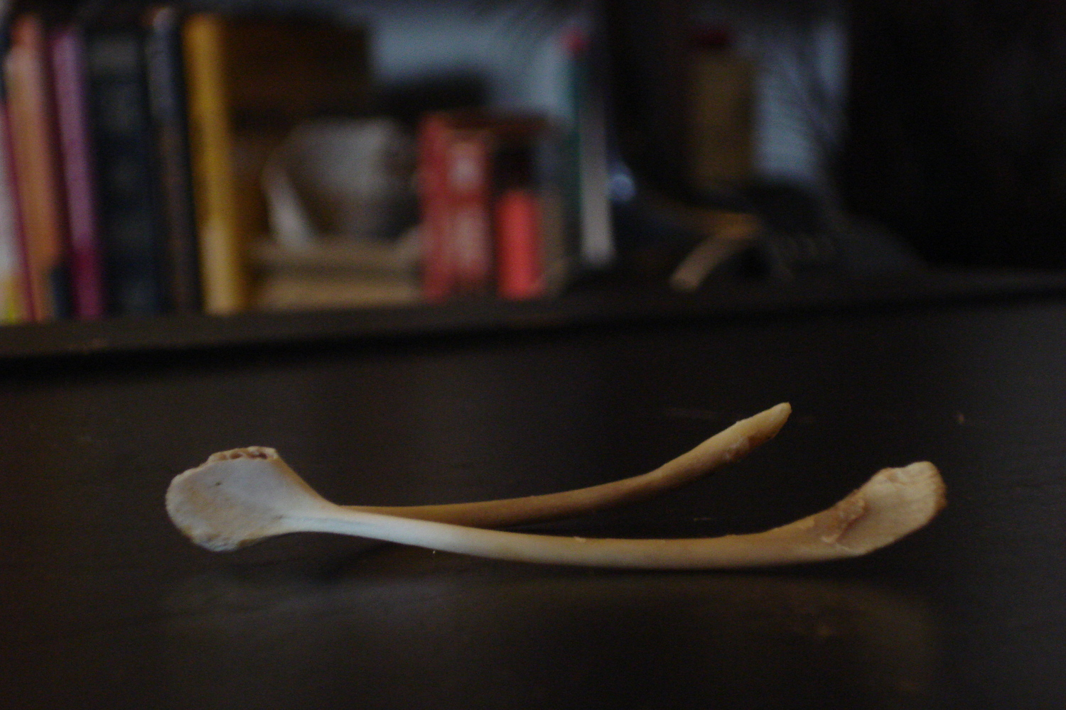 The History of the Wishbone and Other Wishful (but not wishy washy