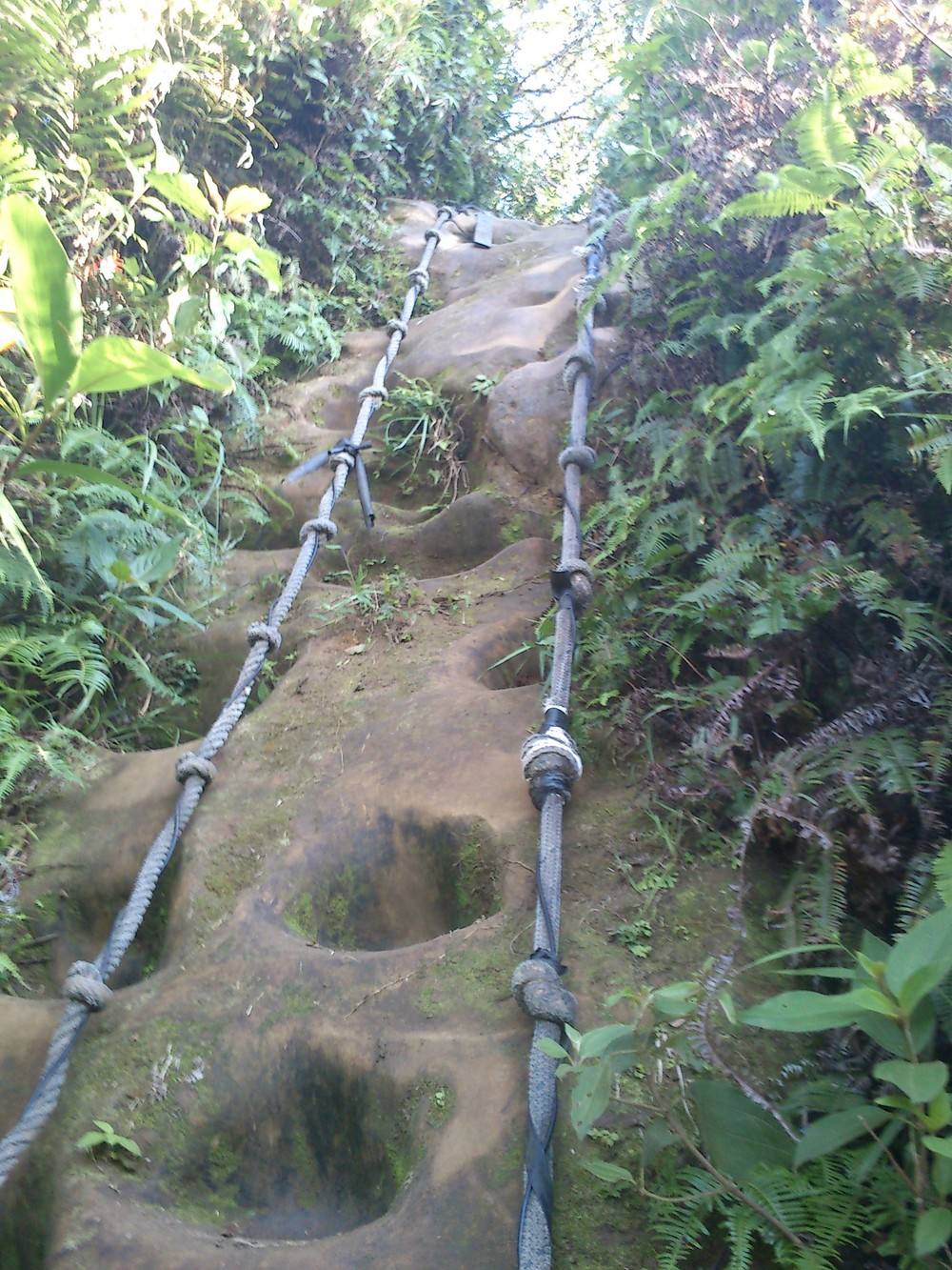 Part of a Nangang climbing trail