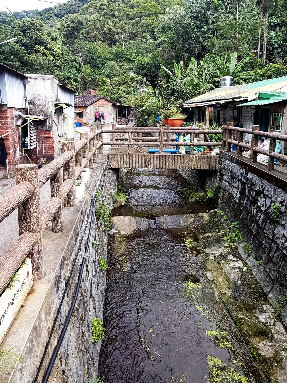 The main stream running through Shanjia on each visit.
